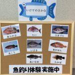 休暇村サービスの宿 国民宿舎いろは島 魚釣り体験