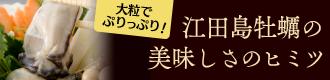 江田島牡蠣の美味しさのヒミツ