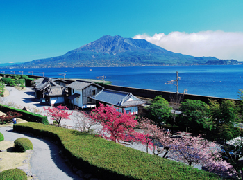 国民宿舎レインボー桜島 桜