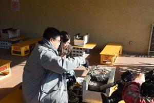 休暇村グループ 公共の宿 国民宿舎サンロード吉備路 かき小屋取材