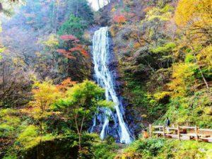 休暇村グループの公共の宿 国民宿舎両神荘 丸神の滝の紅葉