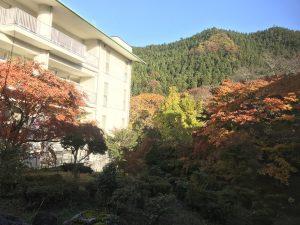 休暇村グループの公共の宿 国民宿舎両神荘 もみじ4