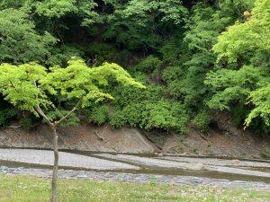 休暇村グループの公共の宿 国民宿舎両神荘 散策5