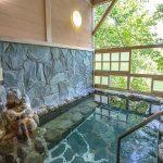 休暇村グループの公共の宿 国民宿舎両神荘 岩露天風呂