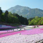 休暇村グループの公共の宿 国民宿舎両神荘 芝桜