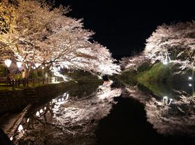国民宿舎山紫苑 桜