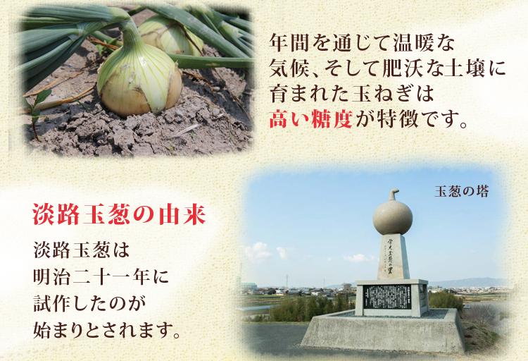 休暇村グループの公共の宿 休暇村市場 淡路島産玉ねぎ甘玉