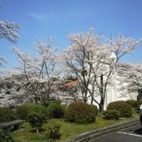 休暇村グループの公共の宿 保養センター美榛苑 桜2
