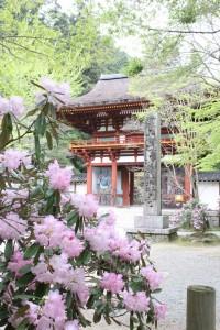 休暇村グループの公共の宿 美榛苑 室生寺