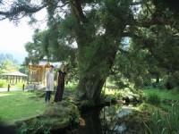 休暇村グループ公共の宿むいかいち温泉ゆ・ら・らの水源地