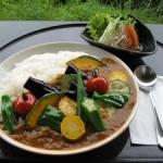 休暇村グループ公共の宿むいかいち温泉ゆ・ら・ら夏野菜カレー