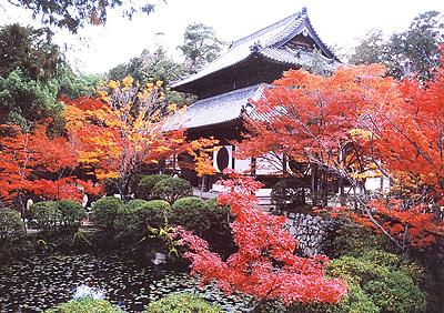 休暇村グループの公共の宿 宝福寺の紅葉1