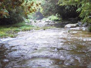 休暇村グループ公共の宿むいかいち温泉ゆ・ら・らの長瀬峡