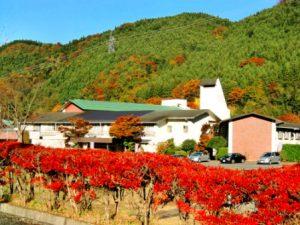 休暇村グループの公共の宿 国民宿舎両神荘 紅葉