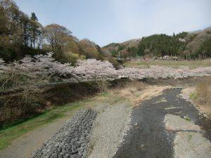 休暇村グループの公共の宿 国民宿舎両神荘 桜4