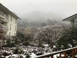 休暇村グループの公共の宿 国民宿舎両神荘 雪景色