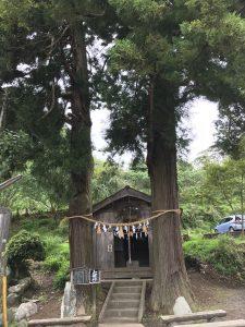 休暇村グループの公共の宿 国民宿舎両神荘 夫婦杉