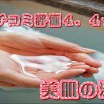休暇村グループ 公共の宿 保養センター 美榛苑 美肌の湯4.4