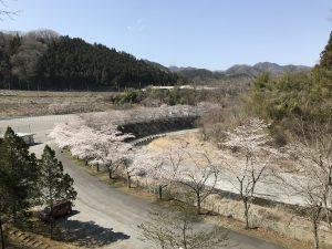 休暇村グループの公共の宿 国民宿舎両神荘 桜2