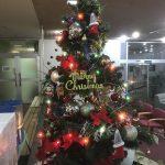 休暇村グループの公共の宿 国民宿舎両神荘 クリスマスツリー2
